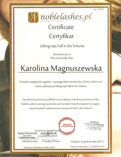 lifting-rzes-certyfikat
